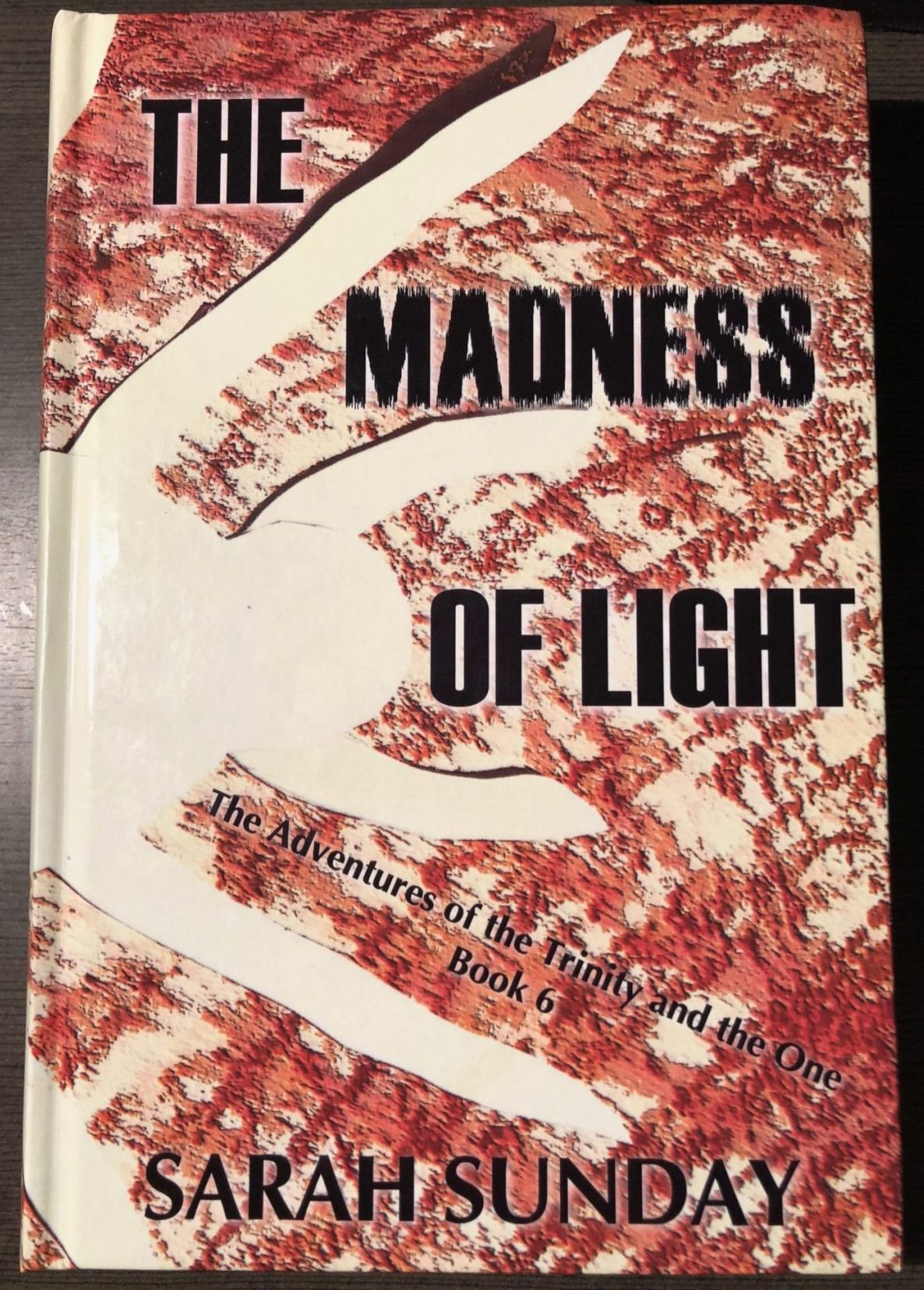 The Madness of Light Hardcover Copy