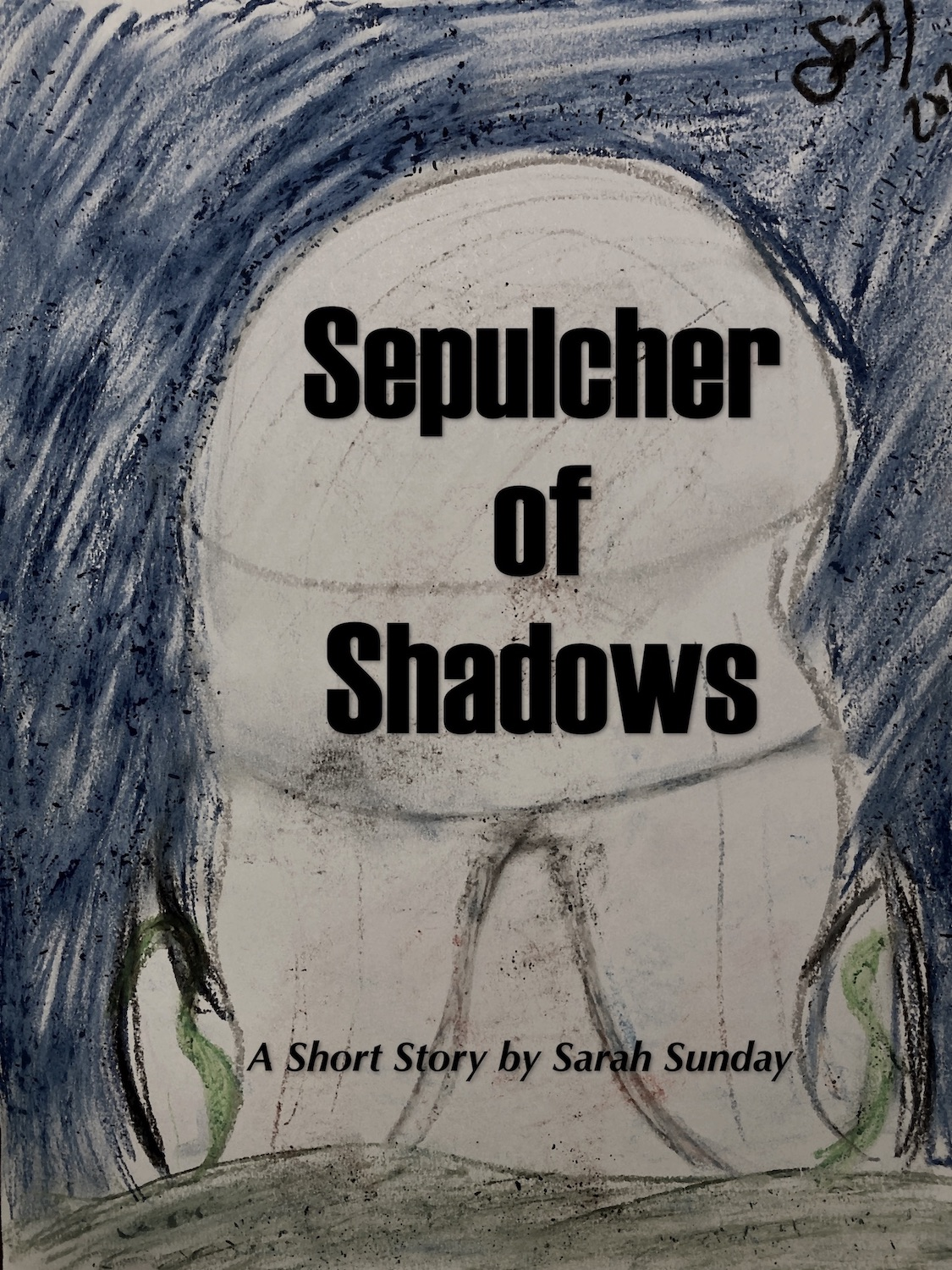 Sepulcher of Shadows: A Short Story following The Madness of Light